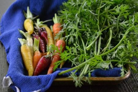 Carrots and Carrot Tops (www.mincedblog.com)