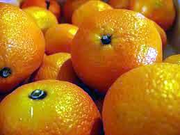 clementine libera terra