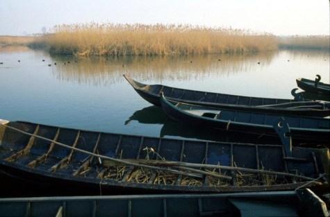 Parco-del-Mincio--barche-