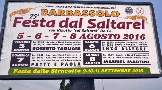 barbassolo - festa dal saltarel 2016.jpg