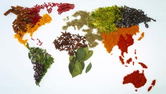 pianeta-cibo-terra