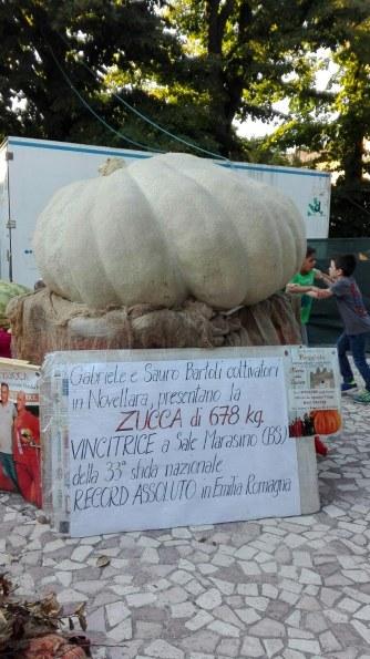 zucca-da-record