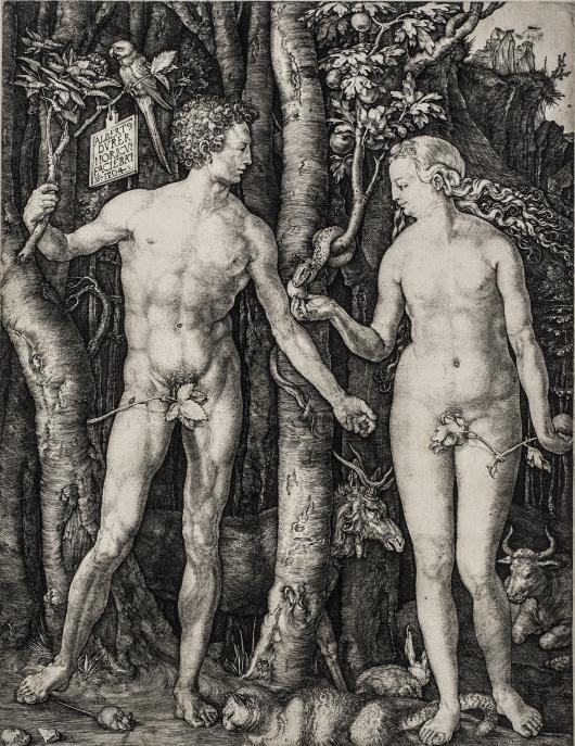Dürer-1.jpg
