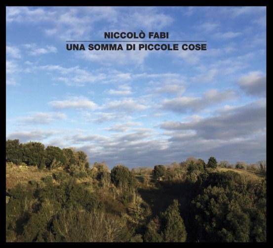 UNA SOMMA DI PICCOLE COSE_cover_b (2).jpg
