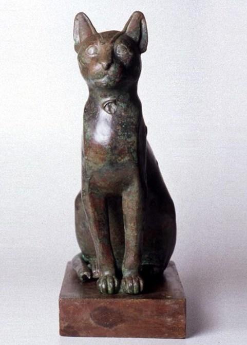 Gatto egizio.jpg