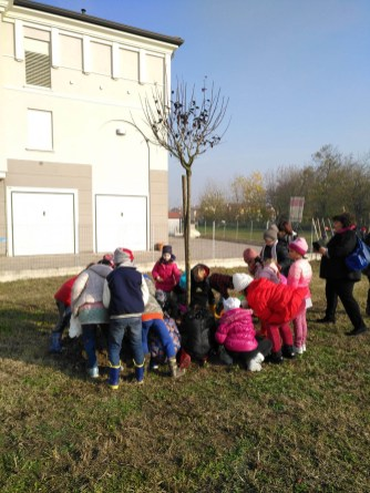 Festa albero 2