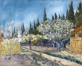 8 - KM 108.685 Orchard bordered by cypresses, April 1888
