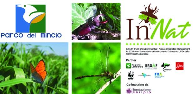 insetti protetti