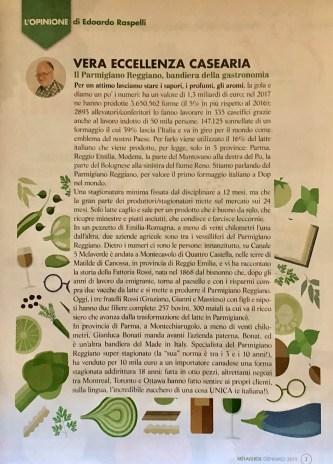 MELAVERDE MAGAZINE gennaio 2019 editoriale Raspelli 2634