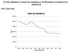 Grafico semine mais 2008-2018 Mn2 copia