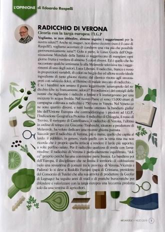 MELAVERDE MAGAZINE editoriale Raspelli