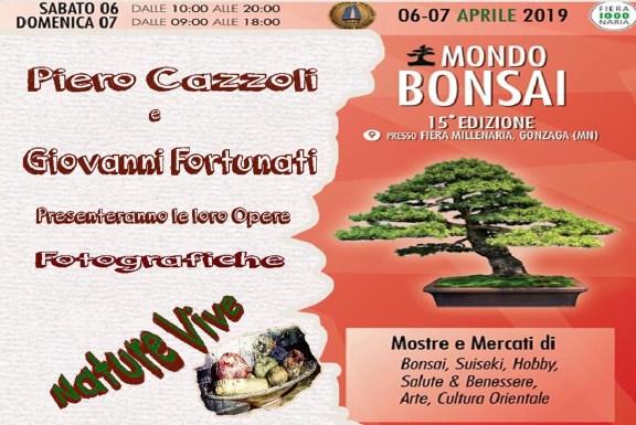 cazzoli 2.jpg