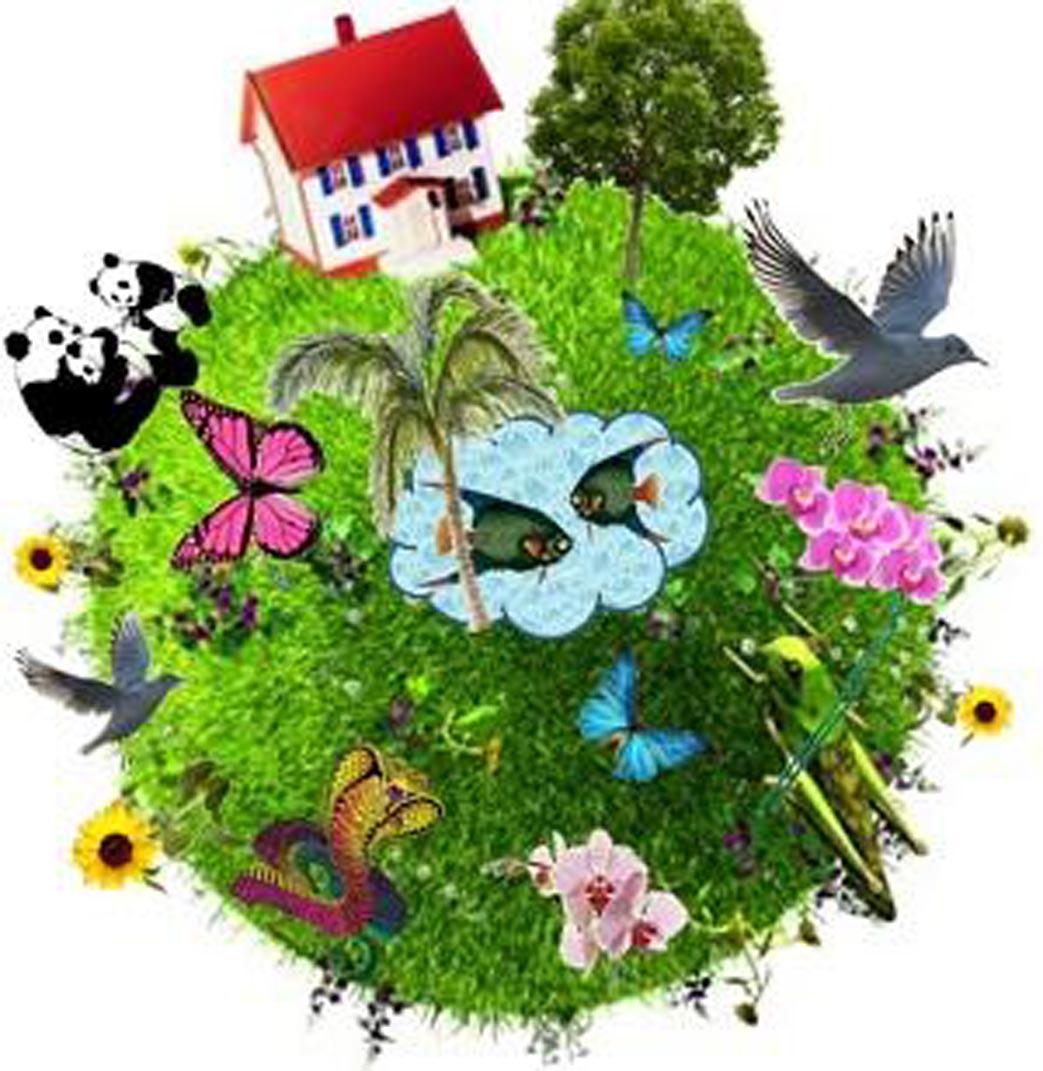 biodiversità.jpg