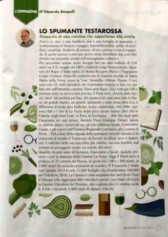 MELAVERDE MAGAZINE giugno Raspelli editoriale