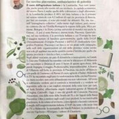 melaverde magazine 1.jpg