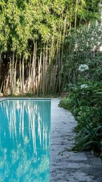 Interno Verde Mantova giardino 21