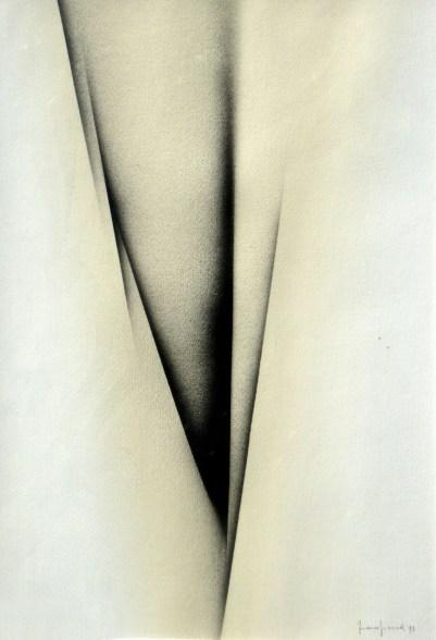 carta 1991