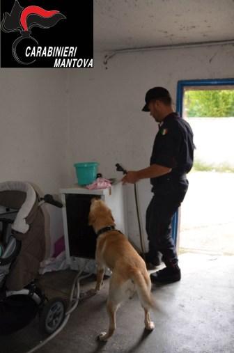 Carabinieri foto 1 (2)