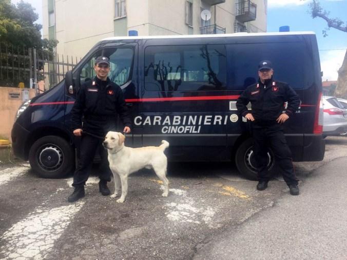 carabinieri unità cinofina con il cane Grinder.jpg