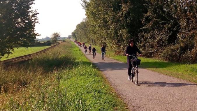 escursioni in bicicletta nel parco del mincio