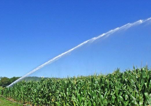 irrigazione pozzi.jpg