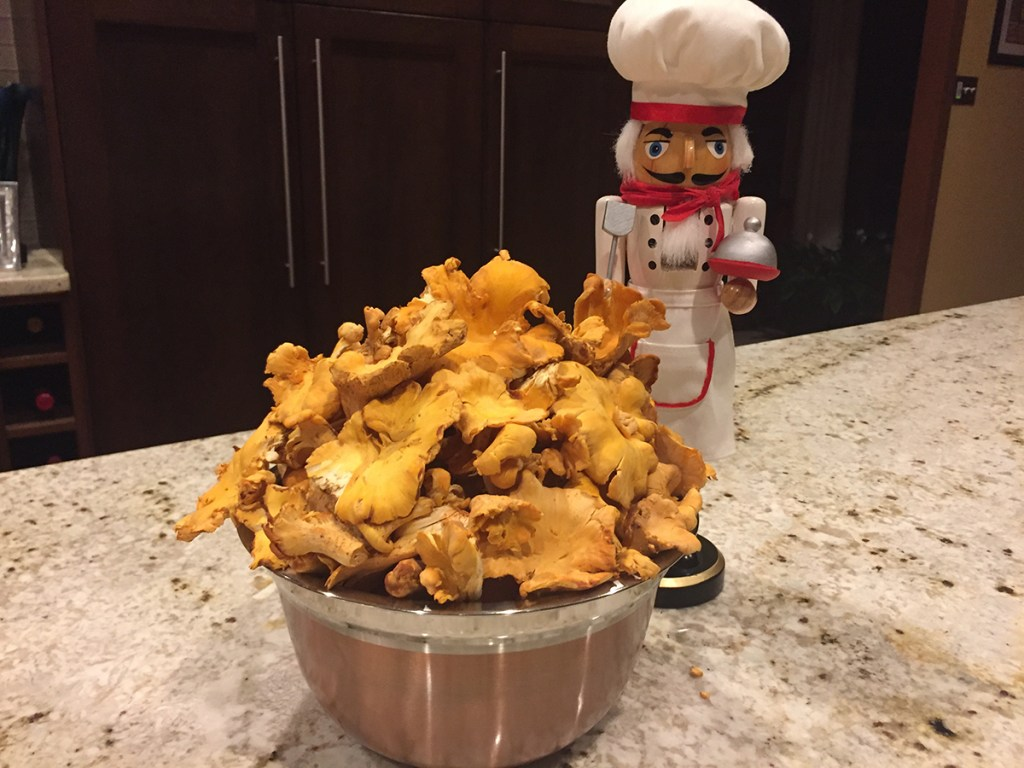 copper bowl heaped with fresh chanterelle mushroom and a nutcracker that looks like a chef