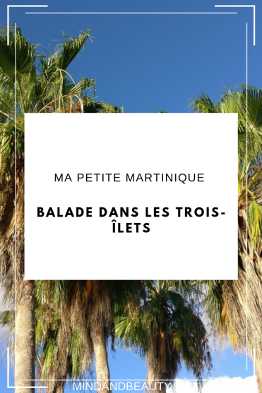 Mind and Beauty - Martinique : Balade aux Trois-Îlets