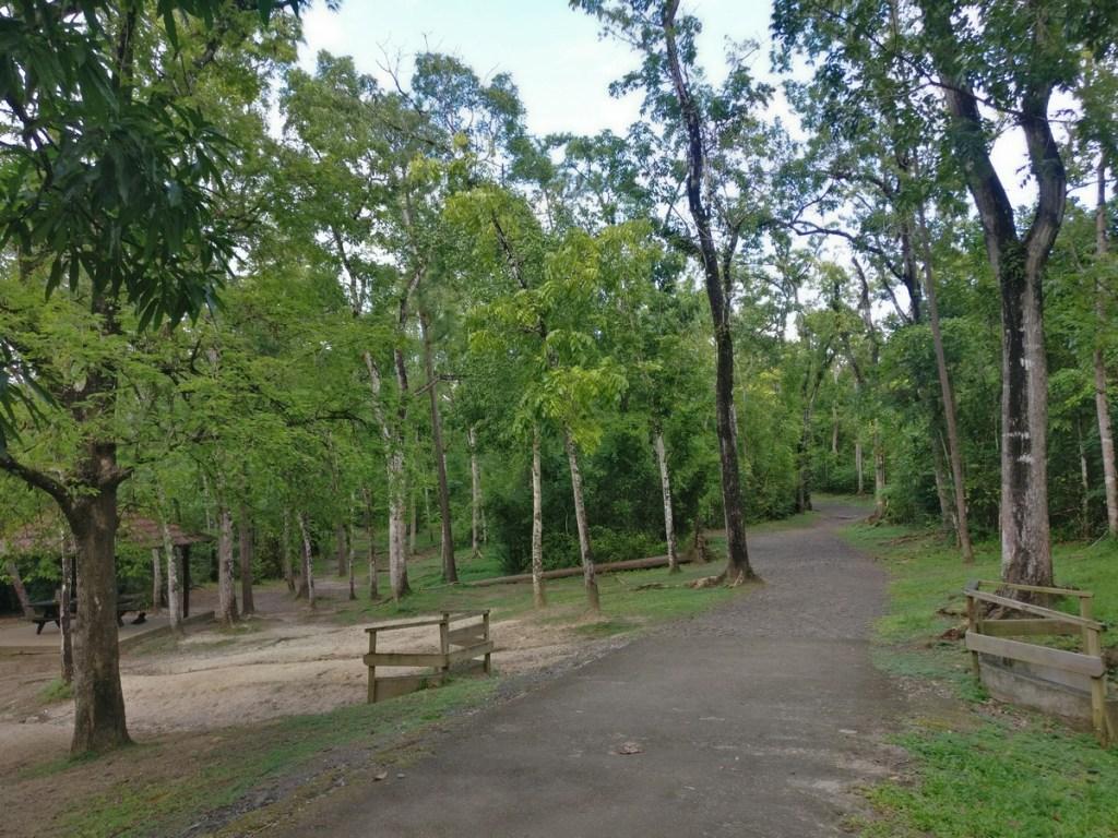 forêt Vatable
