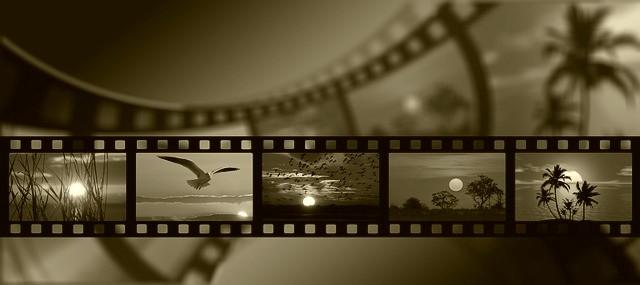 Mind & beauty - Pellicule Film