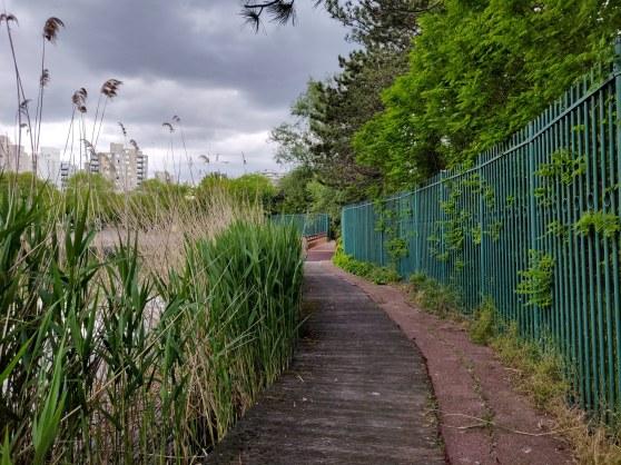 Verdure le long de la promenade