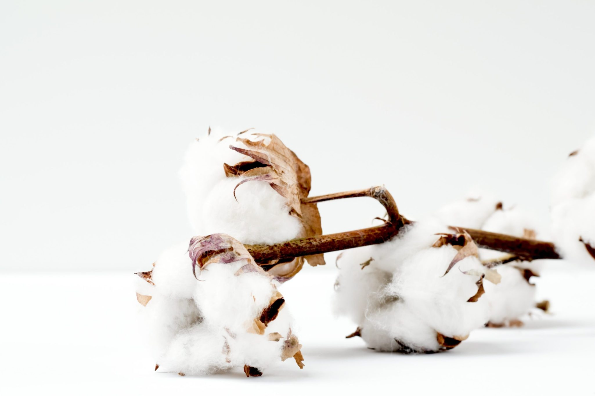 Sustainable cotton swaps