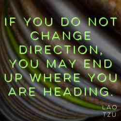 Wisdom Wednesday – Direction