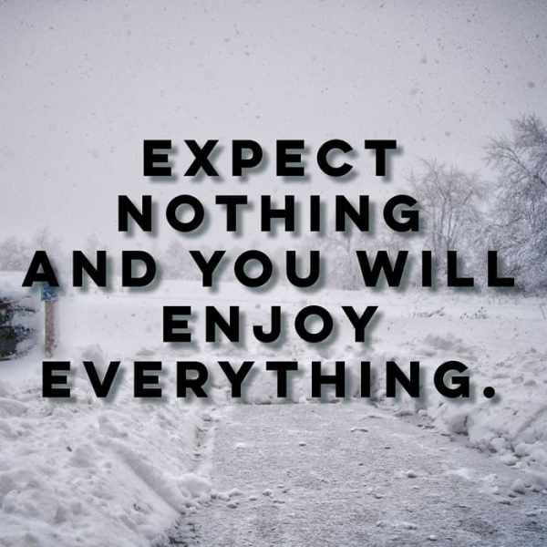 Expect Nothing 2