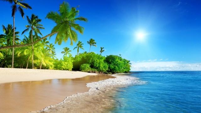 sunshine-beach_031