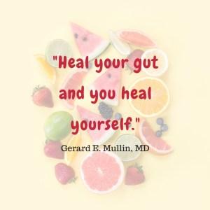 gut bacteria health