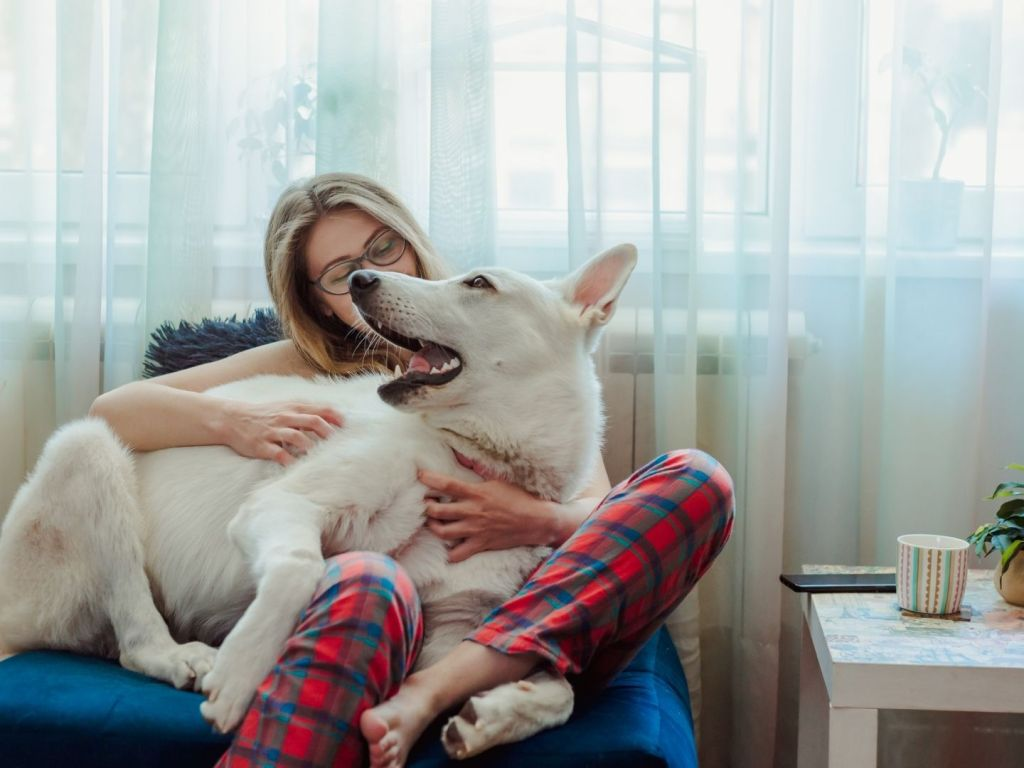 How Having a Pet Can Boost Your Mental Health And Improve Happiness