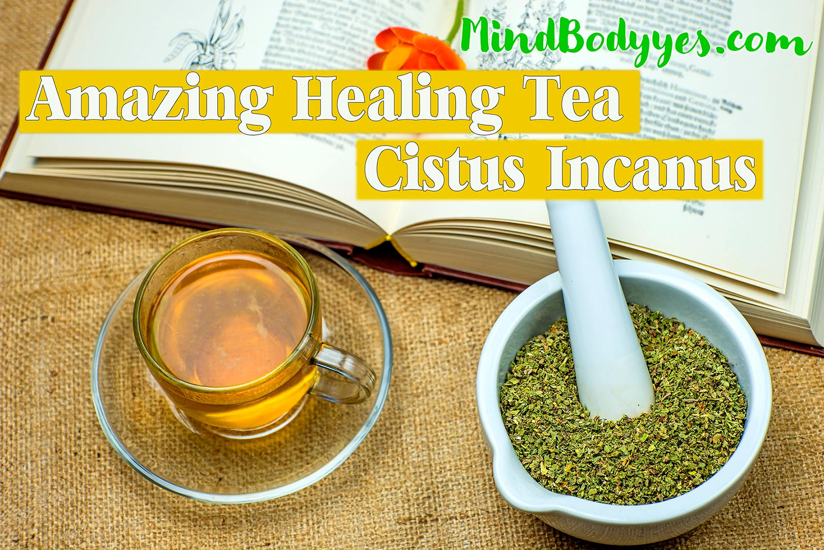 What's Your Cup Of Tea 5 Miracle Teas for Fat Loss pics