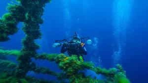 Aquafi : Underwater WiFi or Aquatic Internet