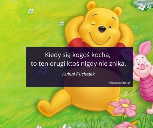 cytaty z bajek Disneya Kubuś Puchatek
