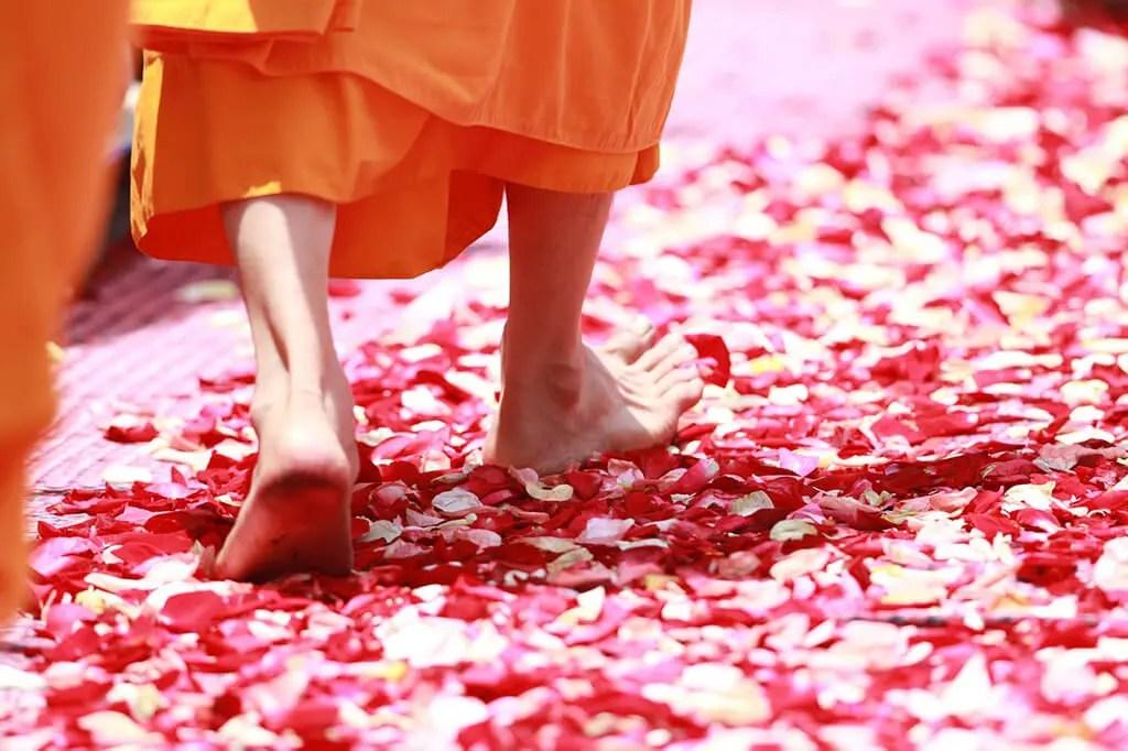 mindful movement - walking