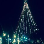 large lighted christmas tree