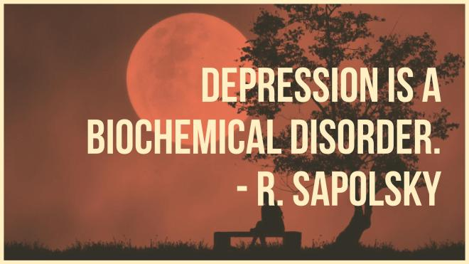 Depression is a biochemical disorder.