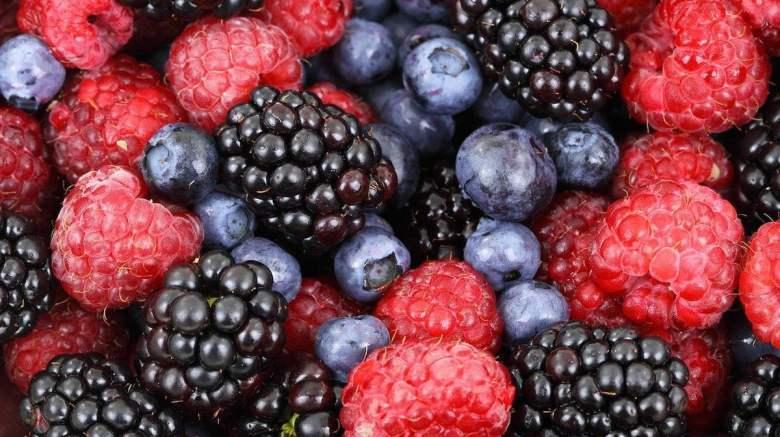 mindfullittles.fruittastinggame.sensory