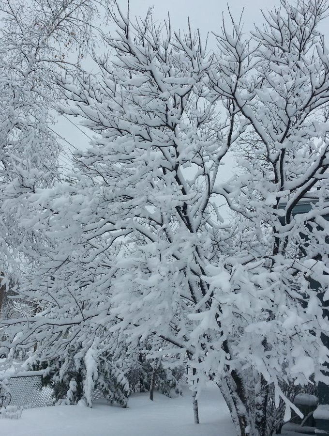 Spring Snow Earth Day www.mindfulmomma.com