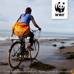 Shop Patagonia at Planet Shoes and Support the WWF