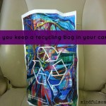 Easy Eco-Tip: Keep a Recycling Bag in Your Car