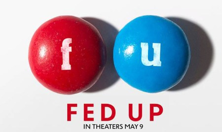 Top 10 Reasons to See the Movie Fed Up via mindfulmomma.com