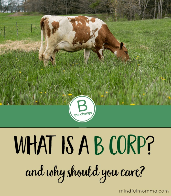 How a B Corp is a force for good for workers, the community and the environment. | Social responsibility | healthy living via @MindfulMomma