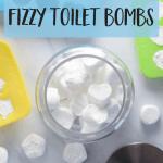 Homemade Fizzy Toilet Bombs