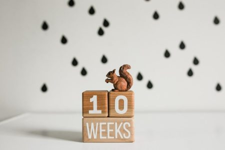Wooden milestone baby blocks